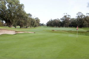 portarlington GC new pic